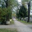 Csepeli temető (Fotó: linuxbox - panoramio.com)
