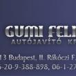 Gumi-Felni Autójavító Kft.