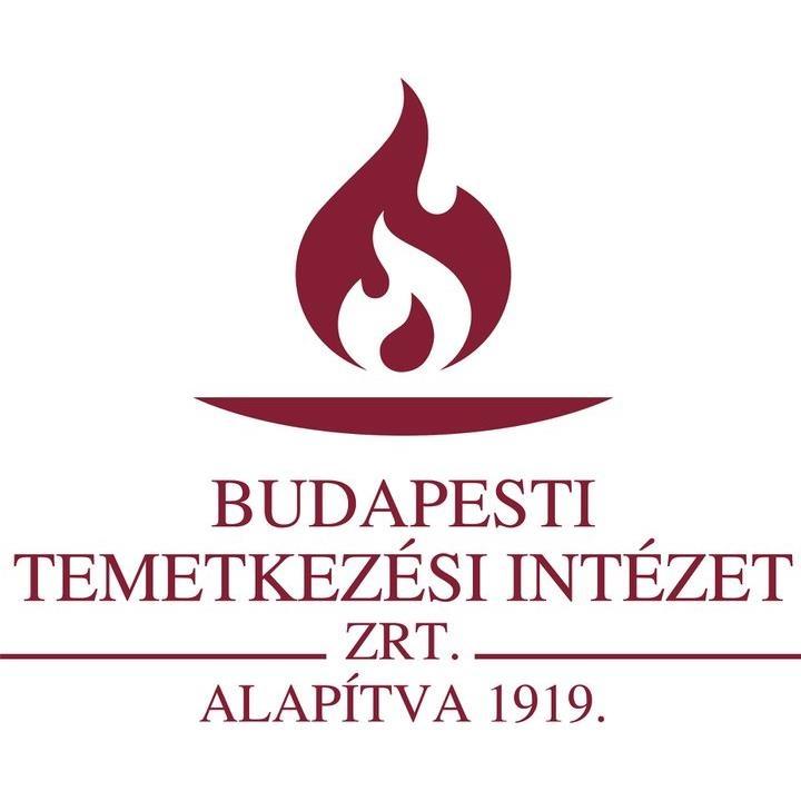 Company that writes dissertation in hungary zrt